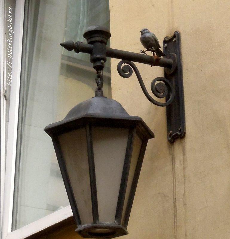 Птичий двор в СПб